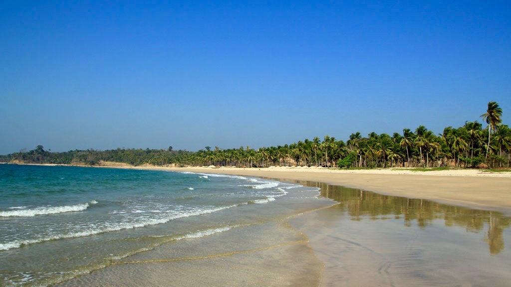 chaung_tha_beach_palmen